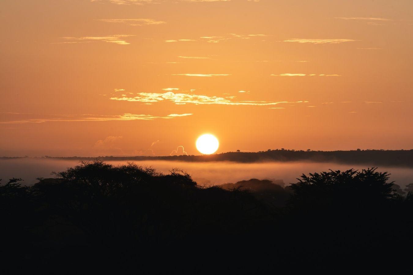 7 Days Kenya Safari Lake Nakuru, Masai Mara, Naivasha and Amboseli National Park | Vacation East Africa Limited